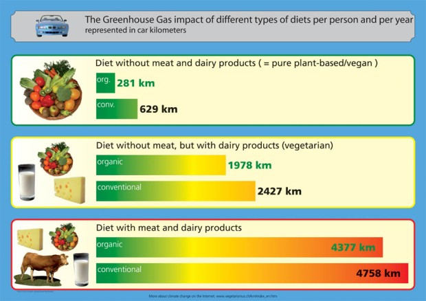 vegan vs meat infographic