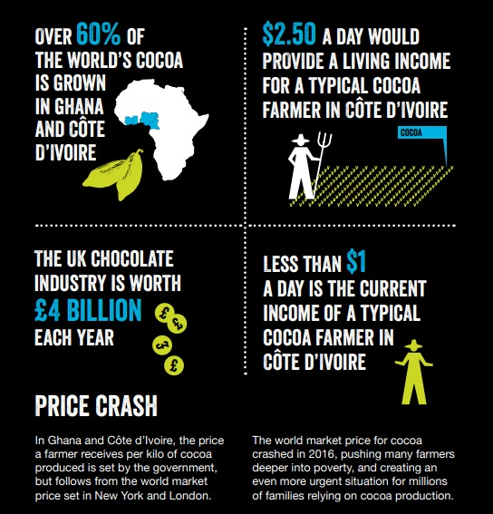 fairtrade cocoa infographic