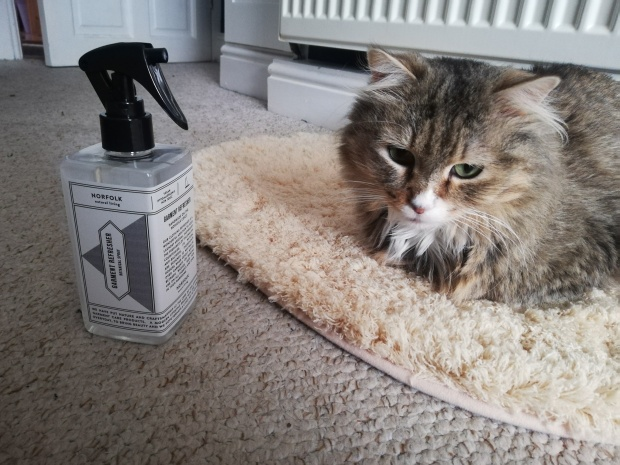 george michael the cat norfolk natural living spray