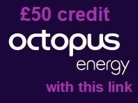 octopus energy free credit discount code