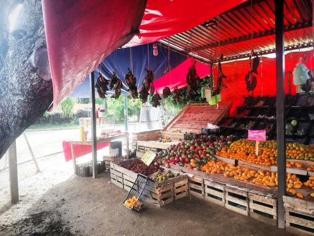 Roadside grocery stall Oaxaca mexico