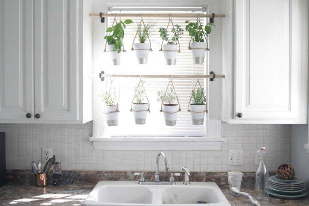 indoor-herb-garden